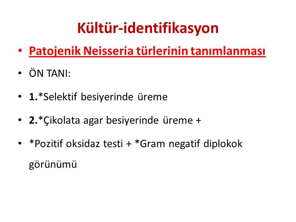 Kültür-identifikasyon Patojenik Neisseria türlerinin tanımlanması ÖN TANI: 1.*Selektif besiyerinde üreme 2.*Çikolata agar besiyerinde üreme + *Pozitif oksidaz testi + *Gram negatif diplokok görünümü