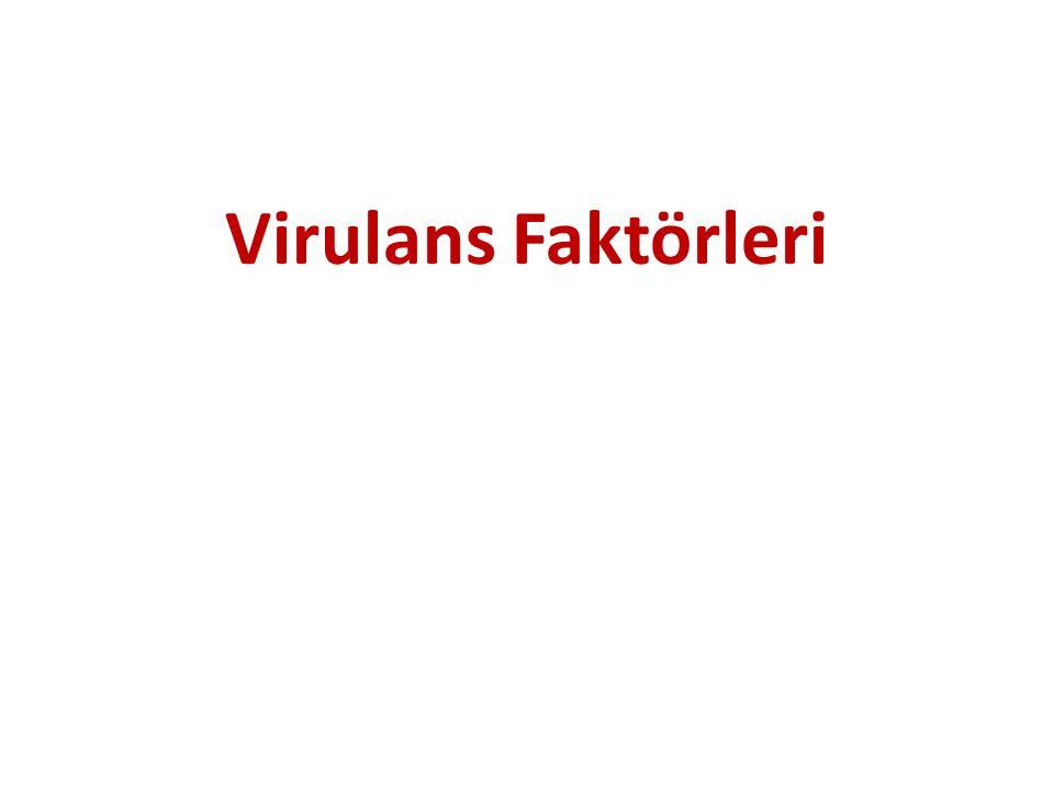 Virulans Faktörleri