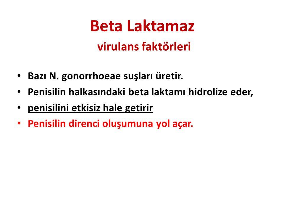 Beta Laktamaz virulans faktörleri Bazı N. gonorrhoeae suşları üretir. Penisilin halkasındaki beta laktamı hidrolize eder, penisilini etkisiz hale geti