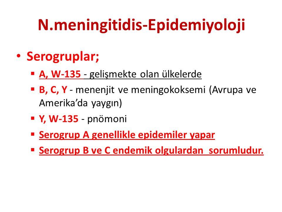 N.meningitidis-Epidemiyoloji Serogruplar;  A, W-135 - gelişmekte olan ülkelerde  B, C, Y - menenjit ve meningokoksemi (Avrupa ve Amerika'da yaygın)  Y, W-135 - pnömoni  Serogrup A genellikle epidemiler yapar  Serogrup B ve C endemik olgulardan sorumludur.