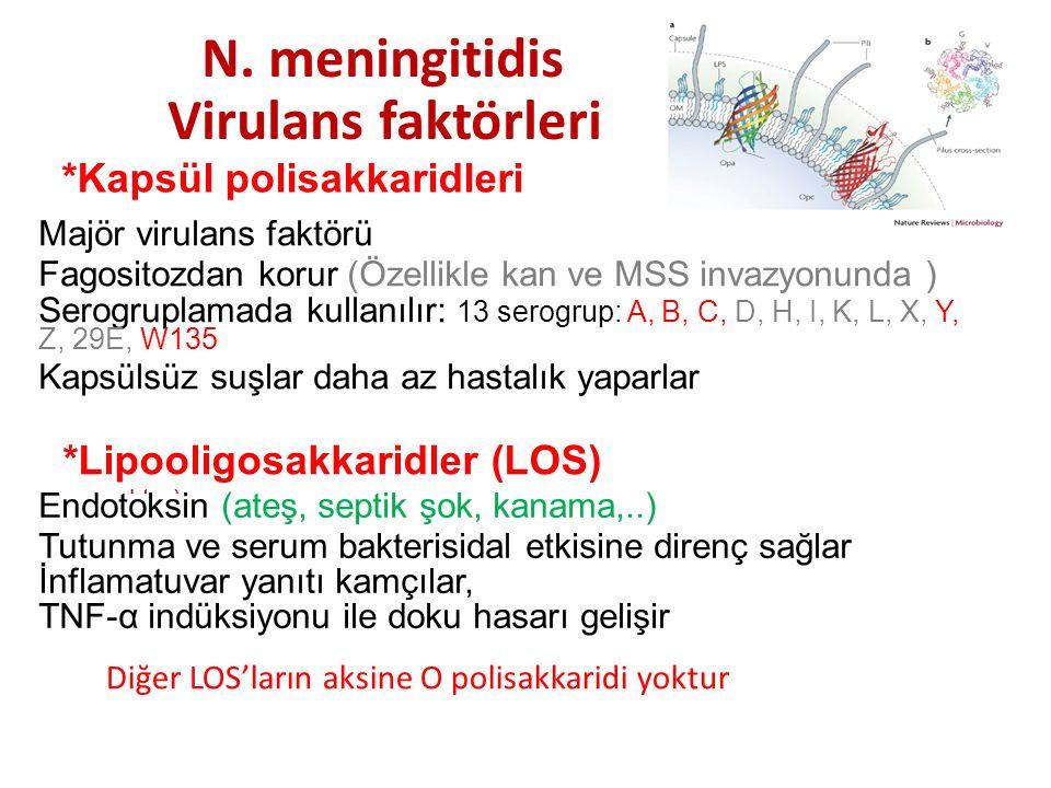 N. meningitidis Virulans faktörleri *Kapsül polisakkaridleri Majör virulans faktörü Fagositozdan korur (Özellikle kan ve MSS invazyonunda ) Serogrupla