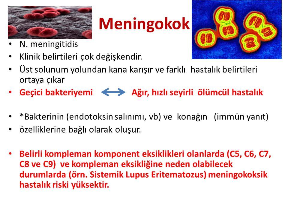 Meningokok N.meningitidis Klinik belirtileri çok değişkendir.