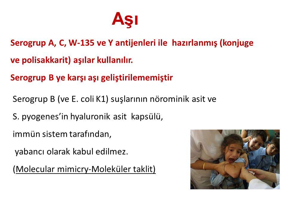 Aşı Serogrup A, C, W-135 ve Y antijenleri ile hazırlanmış (konjuge ve polisakkarit) aşılar kullanılır. Serogrup B ye karşı aşı geliştirilememiştir Ser