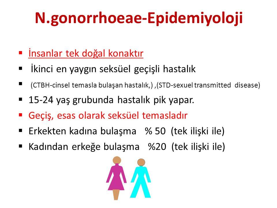 N.gonorrhoeae-Epidemiyoloji  İnsanlar tek doğal konaktır  İkinci en yaygın seksüel geçişli hastalık  (CTBH-cinsel temasla bulaşan hastalık,),(STD-sexuel transmitted disease)  15-24 yaş grubunda hastalık pik yapar.