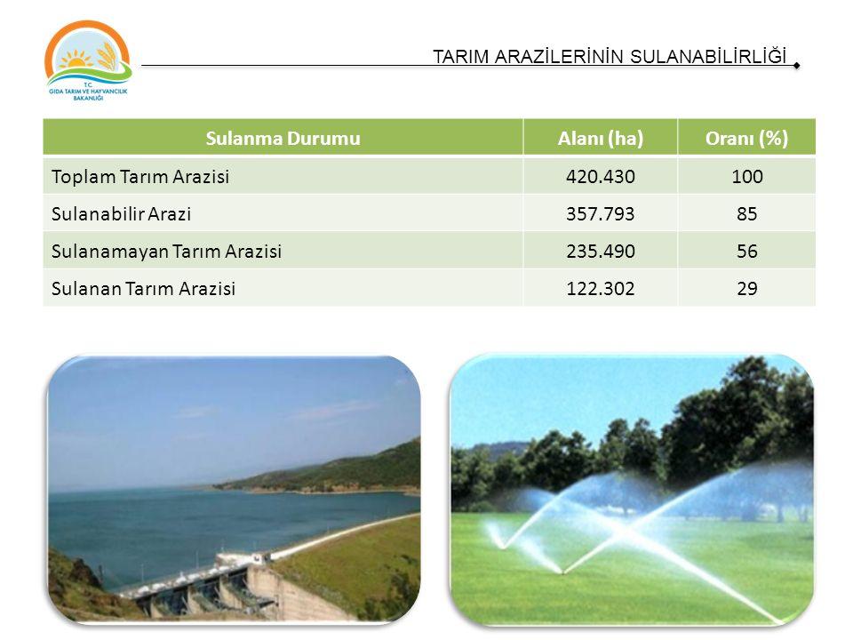 Sulanma DurumuAlanı (ha)Oranı (%) Toplam Tarım Arazisi420.430100 Sulanabilir Arazi357.79385 Sulanamayan Tarım Arazisi235.49056 Sulanan Tarım Arazisi122.30229 TARIM ARAZİLERİNİN SULANABİLİRLİĞİ
