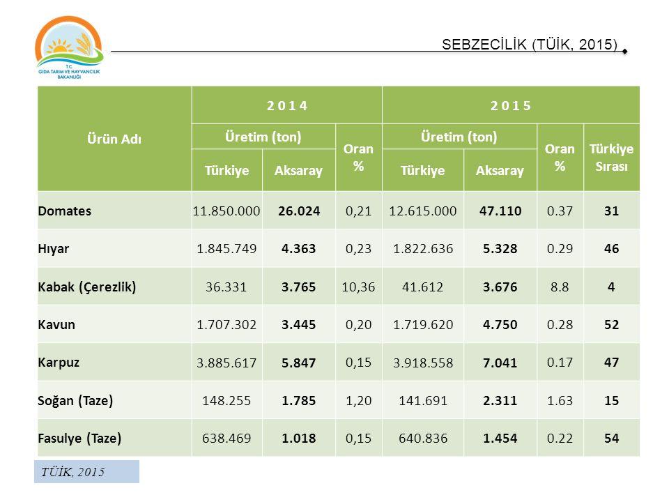 Ürün Adı 2 0 1 42 0 1 5 Üretim (ton) Oran % Üretim (ton) Oran % Türkiye Sırası TürkiyeAksarayTürkiyeAksaray Domates 11.850.00026.024 0,21 12.615.00047.110 0.3731 Hıyar 1.845.7494.363 0,23 1.822.6365.328 0.2946 Kabak (Çerezlik) 36.3313.765 10,36 41.6123.676 8.84 Kavun 1.707.3023.445 0,20 1.719.6204.750 0.2852 Karpuz 3.885.6175.847 0,15 3.918.5587.041 0.1747 Soğan (Taze) 148.2551.785 1,20 141.6912.311 1.6315 Fasulye (Taze) 638.4691.018 0,15 640.8361.454 0.2254 SEBZECİLİK (TÜİK, 2015) TÜİK, 2015