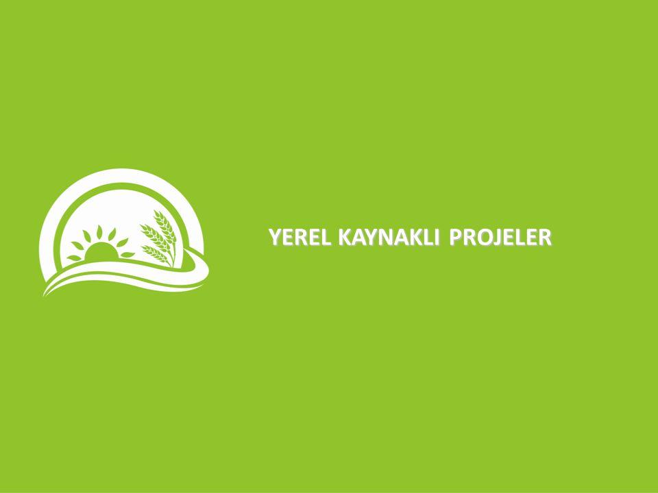 YEREL KAYNAKLI PROJELER