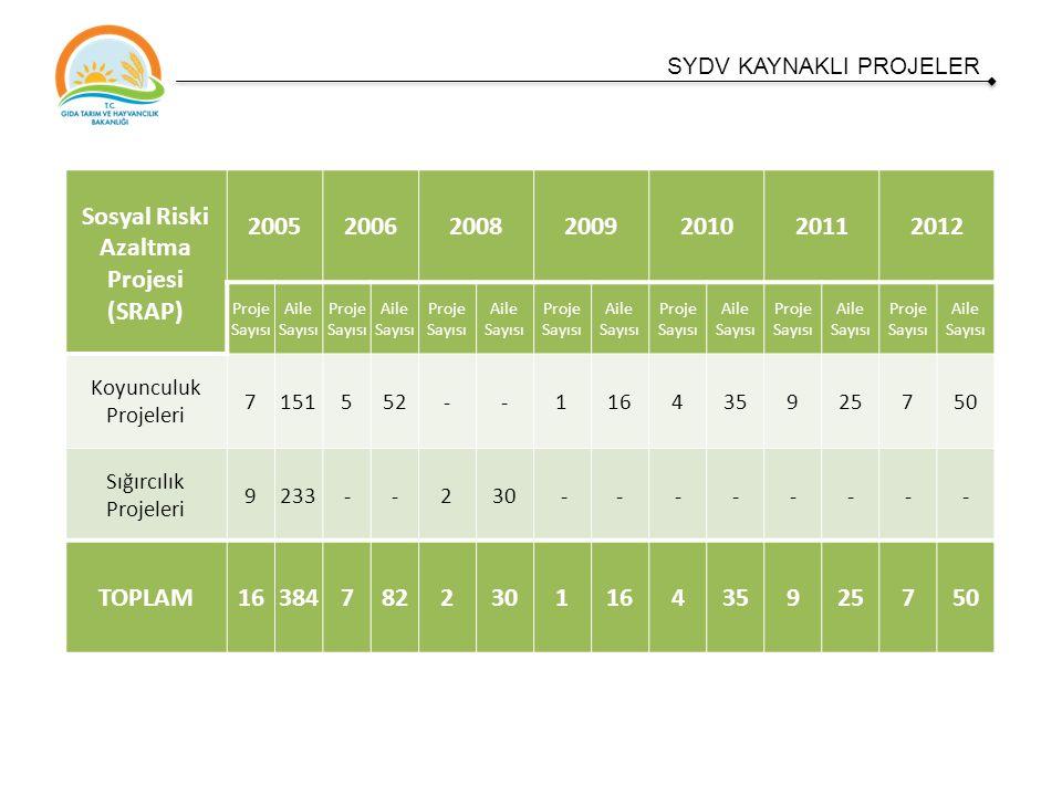 Sosyal Riski Azaltma Projesi (SRAP) 2005200620082009201020112012 Proje Sayısı Aile Sayısı Proje Sayısı Aile Sayısı Proje Sayısı Aile Sayısı Proje Sayısı Aile Sayısı Proje Sayısı Aile Sayısı Proje Sayısı Aile Sayısı Proje Sayısı Aile Sayısı Koyunculuk Projeleri 7151552--116435925750 Sığırcılık Projeleri 9233--230 -------- TOPLAM16384782230116435925750 SYDV KAYNAKLI PROJELER