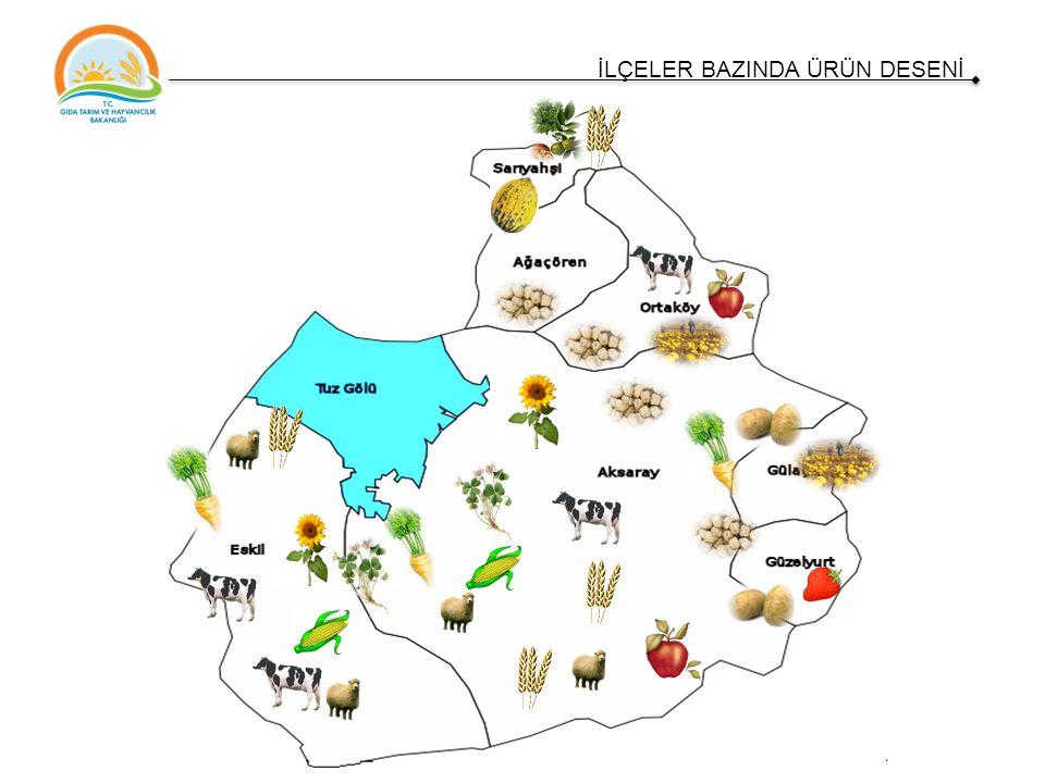 İlin Yüzölçümü (ha)799.700 Tarım Arazileri Büyüklüğü (ha) 420.430 GSYİH'e Yaptığı Katkı bakımından Tarım Sektörünün Payı (%) * 31.3 İlin Tarımsal Üretim Değerinin Ülke İçindeki sırası ** 28 Tarım Alanlarına Göre Ülke İçindeki Sırası*** 14 İl İstihdamında Tarımın Oranı*** %42,2 * İller Bazında Sektör Payları DPT, 2001 ** İllerin Tarımsal Üretim Değerleri TÜİK, 2011 *** TÜİK 2013 GÖSTERGELERLE AKSARAY TARIMI