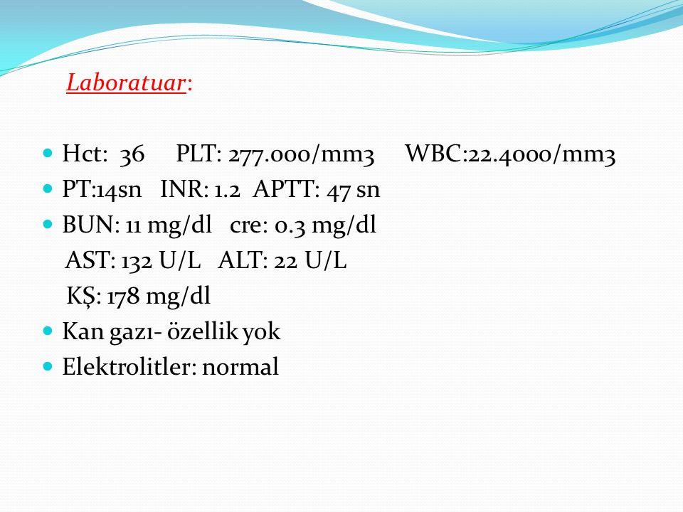 Laboratuar: Hct: 36 PLT: 277.000/mm3 WBC:22.4000/mm3 PT:14sn INR: 1.2 APTT: 47 sn BUN: 11 mg/dl cre: 0.3 mg/dl AST: 132 U/L ALT: 22 U/L KŞ: 178 mg/dl Kan gazı- özellik yok Elektrolitler: normal