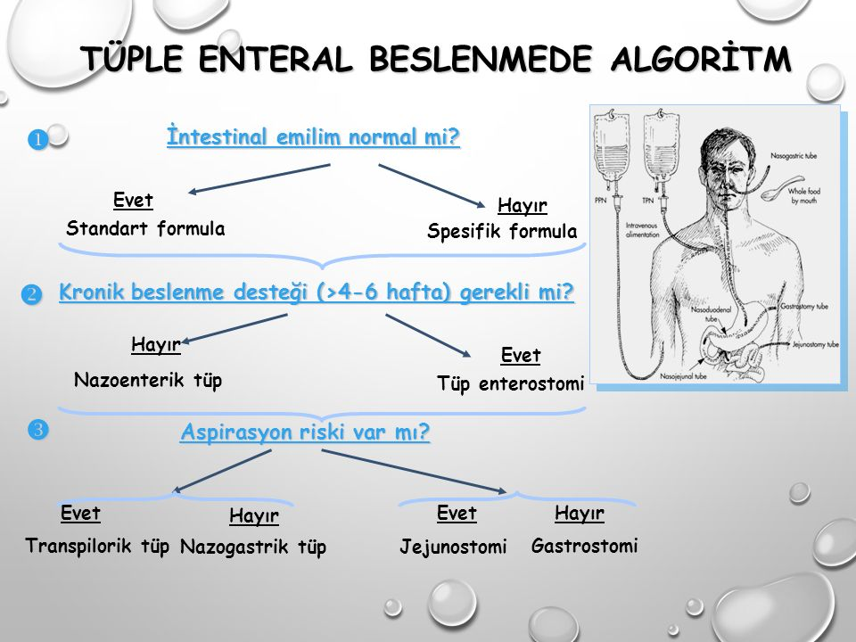 TÜPLE ENTERAL BESLENMEDE ALGORİTM İntestinal emilim normal mi.