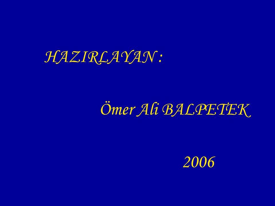 HAZIRLAYAN : Ömer Ali BALPETEK 2006