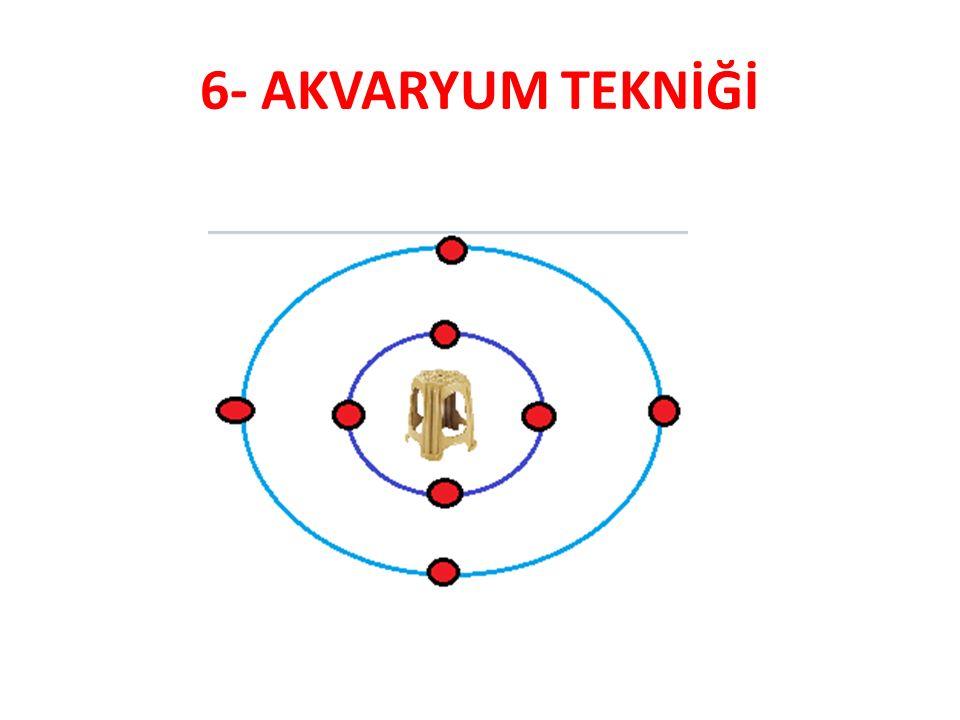 6- AKVARYUM TEKNİĞİ