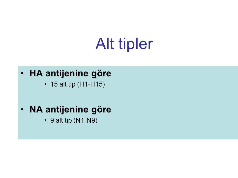 Alt tipler HA antijenine göre 15 alt tip (H1-H15) NA antijenine göre 9 alt tip (N1-N9)