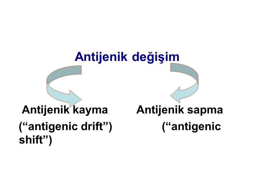 "Antijenik değişim Antijenik kaymaAntijenik sapma (""antigenic drift"")(""antigenic shift"")"