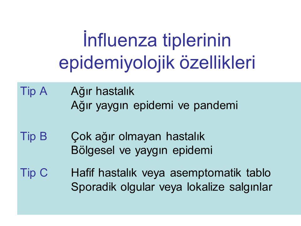İnfluenza tiplerinin epidemiyolojik özellikleri Tip AAğır hastalık Ağır yaygın epidemi ve pandemi Tip BÇok ağır olmayan hastalık Bölgesel ve yaygın ep