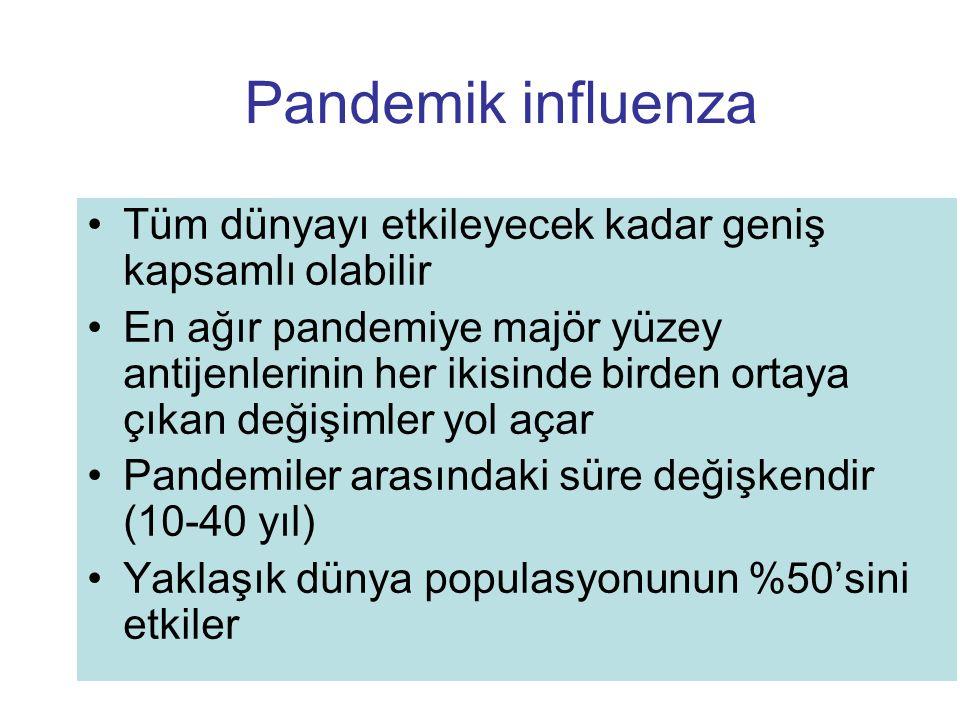 Pandemik influenza Tüm dünyayı etkileyecek kadar geniş kapsamlı olabilir En ağır pandemiye majör yüzey antijenlerinin her ikisinde birden ortaya çıkan
