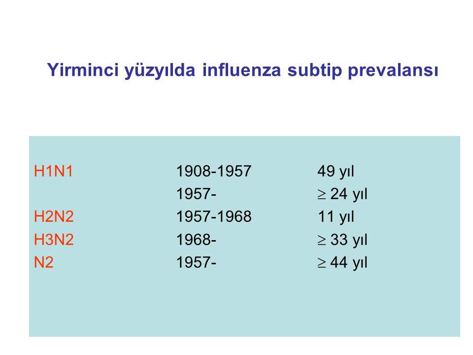 Yirminci yüzyılda influenza subtip prevalansı H1N1 1908-195749 yıl 1957-  24 yıl H2N21957-196811 yıl H3N21968-  33 yıl N21957-  44 yıl