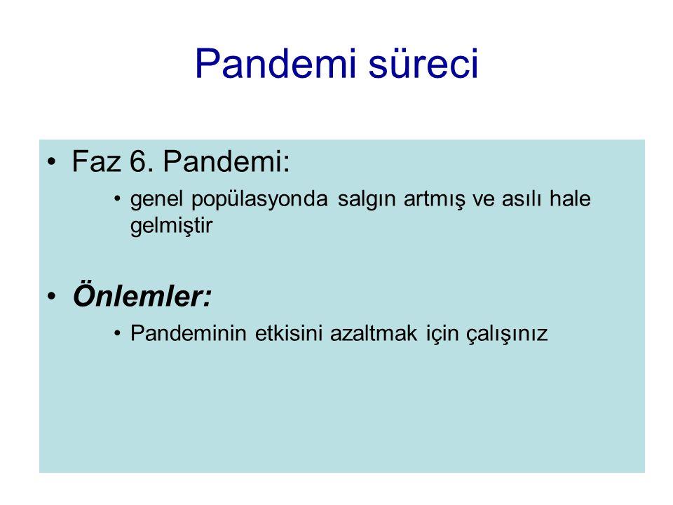 Pandemi süreci Faz 6. Pandemi: genel popülasyonda salgın artmış ve asılı hale gelmiştir Önlemler: Pandeminin etkisini azaltmak için çalışınız