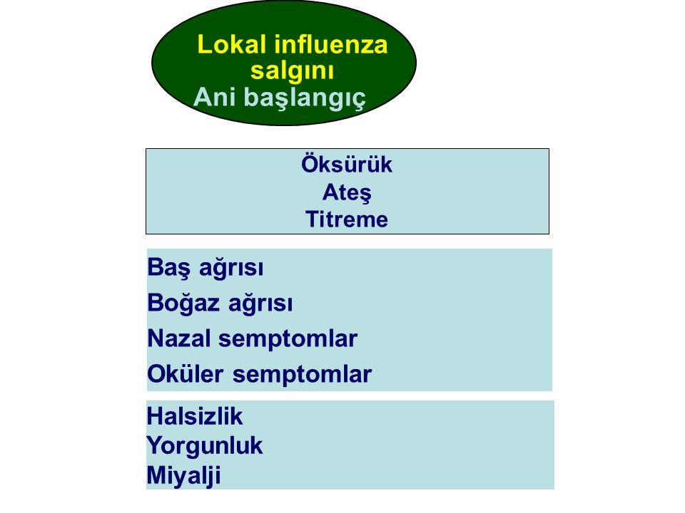 Ani başlangıç Lokal influenza salgını Baş ağrısı Boğaz ağrısı Nazal semptomlar Oküler semptomlar Halsizlik Yorgunluk Miyalji Öksürük Ateş Titreme