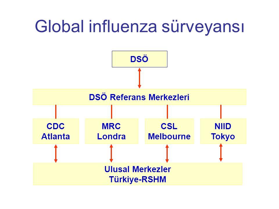 Global influenza sürveyansı DSÖ DSÖ Referans Merkezleri CDC Atlanta MRC Londra CSL Melbourne NIID Tokyo Ulusal Merkezler Türkiye-RSHM