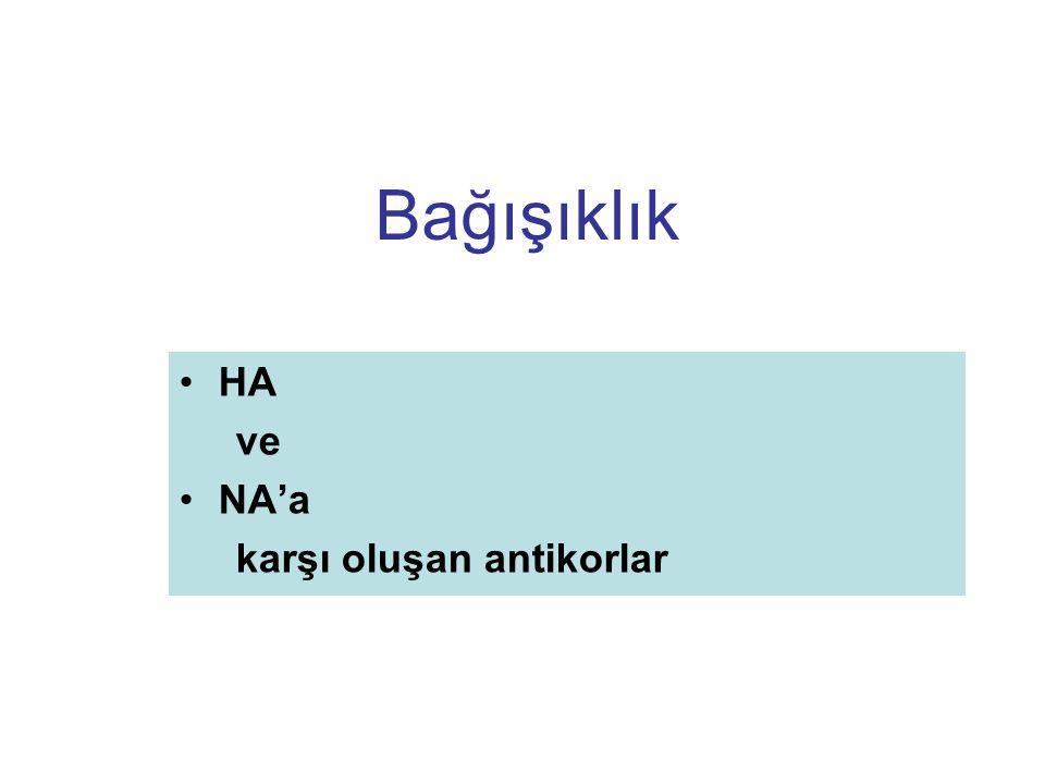 Bağışıklık HA ve NA'a karşı oluşan antikorlar
