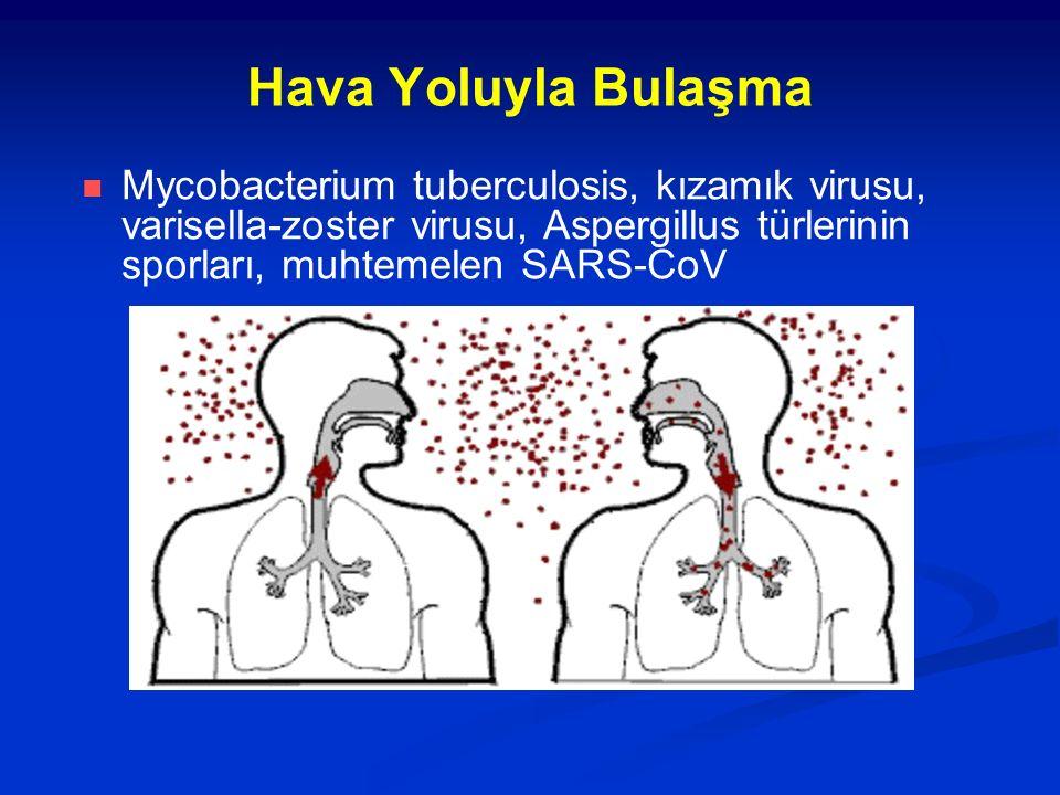 Hava Yoluyla Bulaşma Mycobacterium tuberculosis, kızamık virusu, varisella-zoster virusu, Aspergillus türlerinin sporları, muhtemelen SARS-CoV