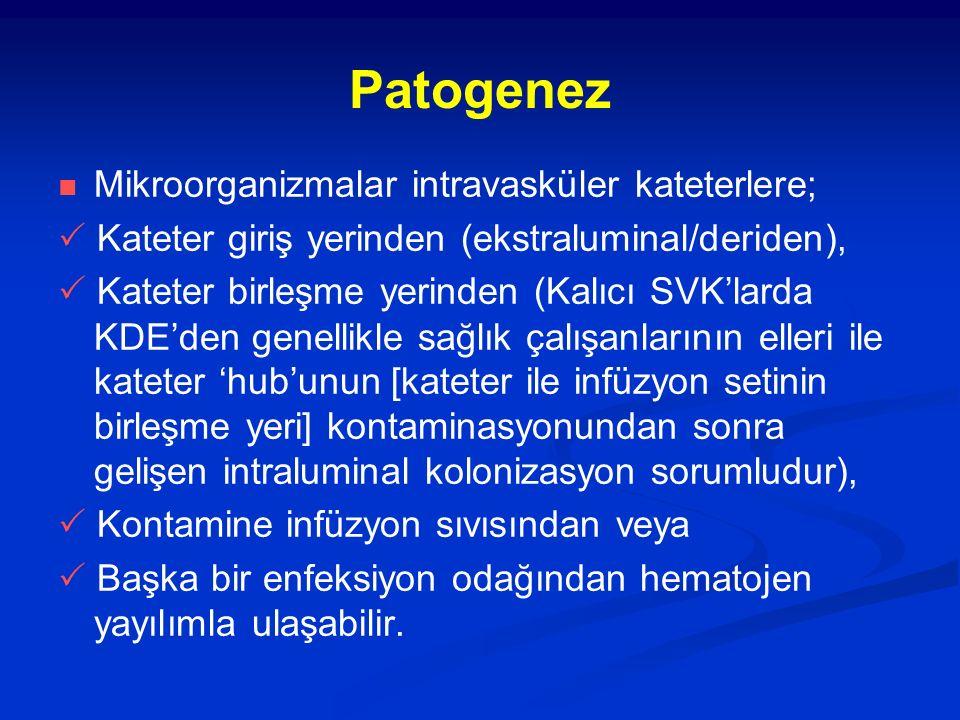 Patogenez Mikroorganizmalar intravasküler kateterlere;  Kateter giriş yerinden (ekstraluminal/deriden),  Kateter birleşme yerinden (Kalıcı SVK'larda
