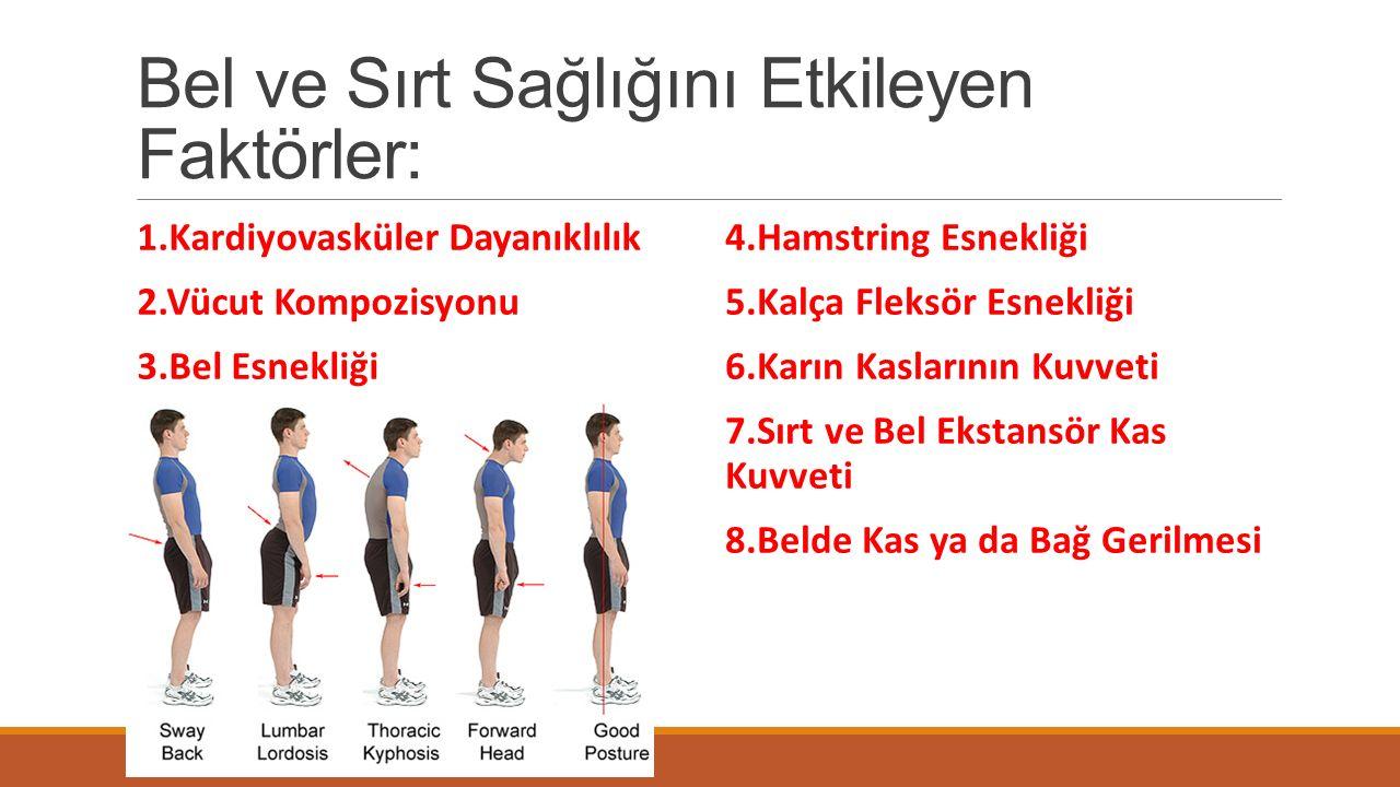 Bel ve Sırt Sağlığını Etkileyen Faktörler: 1.Kardiyovasküler Dayanıklılık 2.Vücut Kompozisyonu 3.Bel Esnekliği 4.Hamstring Esnekliği 5.Kalça Fleksör E