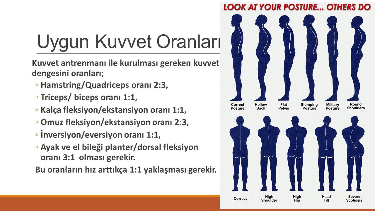 Uygun Kuvvet Oranları Kuvvet antrenmanı ile kurulması gereken kuvvet dengesini oranları; ◦Hamstring/Quadriceps oranı 2:3, ◦Triceps/ biceps oranı 1:1,