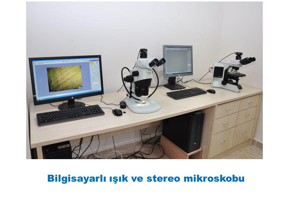 Bilgisayarlı ışık ve stereo mikroskobu