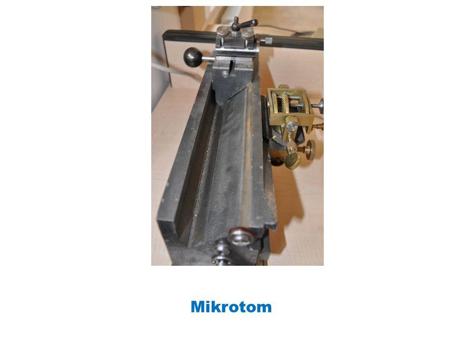 Mikrotom