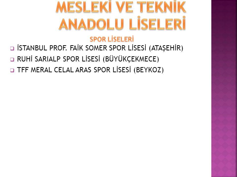  İSTANBUL PROF.