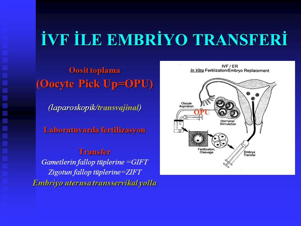 İVF için ne gerekli? Oosit - Sperm - Uterus Oosit + sperm Vücut dışında fertilizasyonu Embriyoların uterus içine yerleştirilmesi
