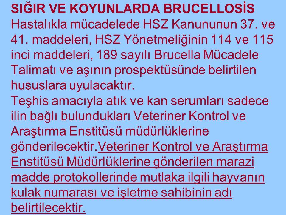 SIĞIR VE KOYUNLARDA BRUCELLOSİS Hastalıkla mücadelede HSZ Kanununun 37.