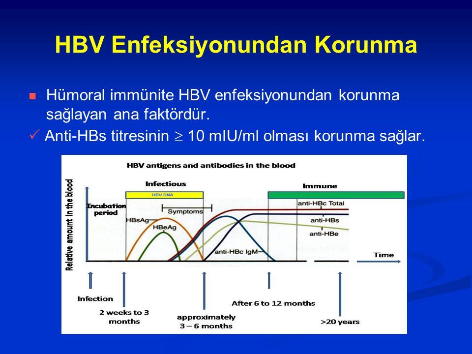 HBV Enfeksiyonundan Korunma Hümoral immünite HBV enfeksiyonundan korunma sağlayan ana faktördür.