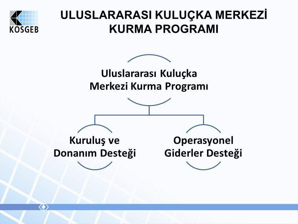ULUSLARARASI KULUÇKA MERKEZİ KURMA PROGRAMI Uluslararası Kuluçka Merkezi Kurma Programı Kuruluş ve Donanım Desteği Operasyonel Giderler Desteği