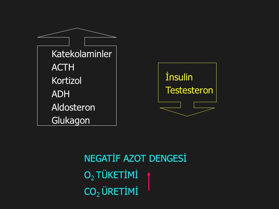 Katekolaminler ACTH Kortizol ADH Aldosteron Glukagon İnsulin Testesteron NEGATİF AZOT DENGESİ O 2 TÜKETİMİ CO 2 ÜRETİMİ