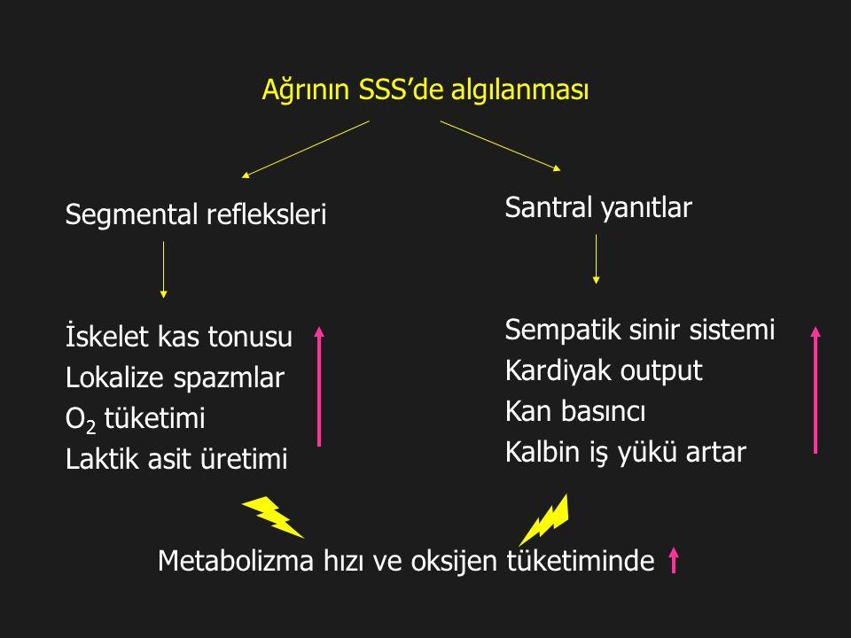 Ağrının SSS'de algılanması Segmental refleksleri İskelet kas tonusu Lokalize spazmlar O 2 tüketimi Laktik asit üretimi Santral yanıtlar Sempatik sinir sistemi Kardiyak output Kan basıncı Kalbin iş yükü artar Metabolizma hızı ve oksijen tüketiminde