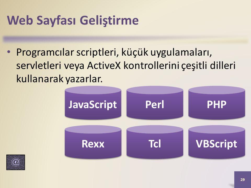 Web Sayfası Geliştirme Programcılar scriptleri, küçük uygulamaları, servletleri veya ActiveX kontrollerini çeşitli dilleri kullanarak yazarlar.
