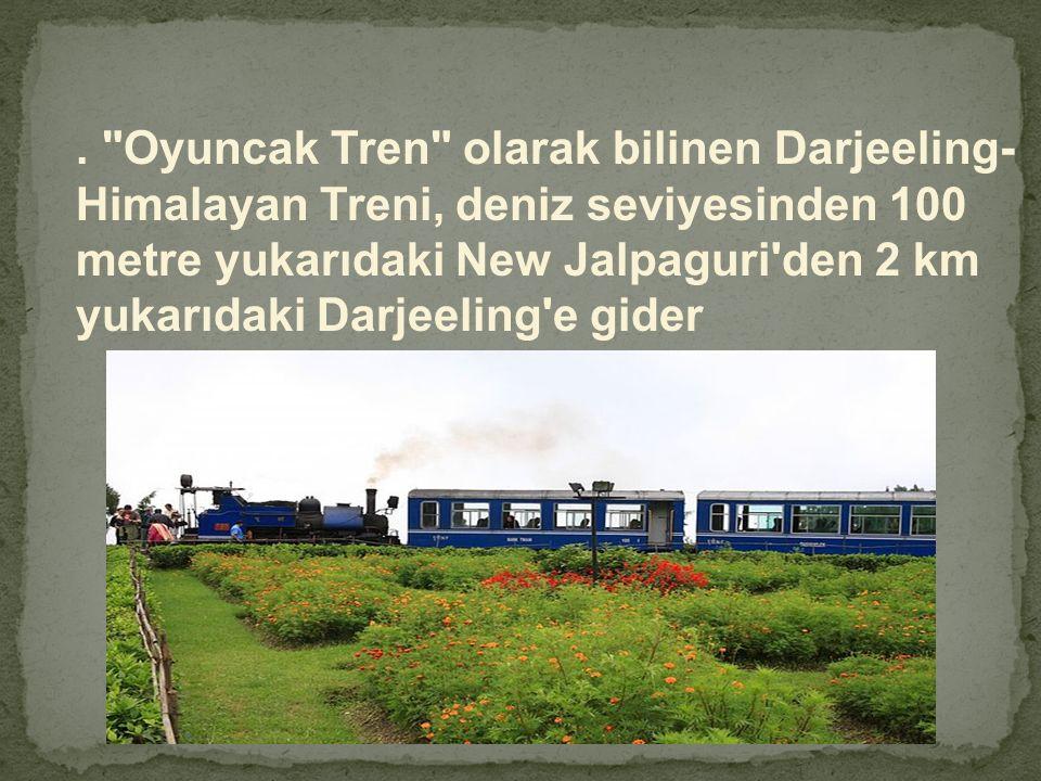 . Oyuncak Tren olarak bilinen Darjeeling- Himalayan Treni, deniz seviyesinden 100 metre yukarıdaki New Jalpaguri den 2 km yukarıdaki Darjeeling e gider