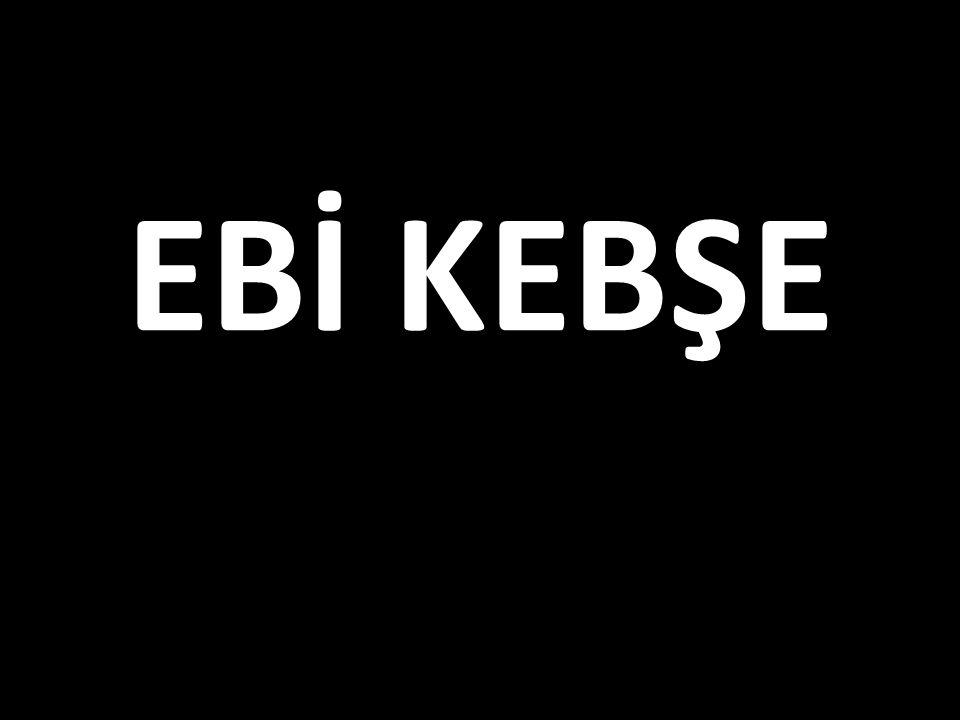 EBİ KEBŞE