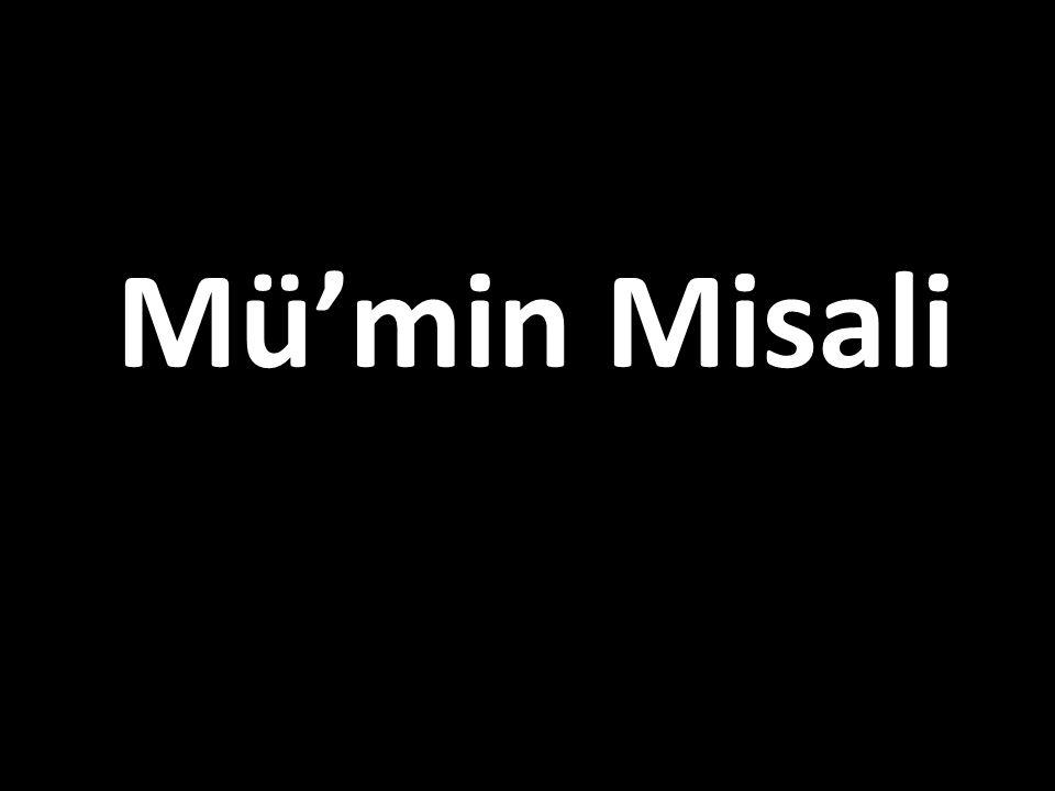 Mü'min Misali