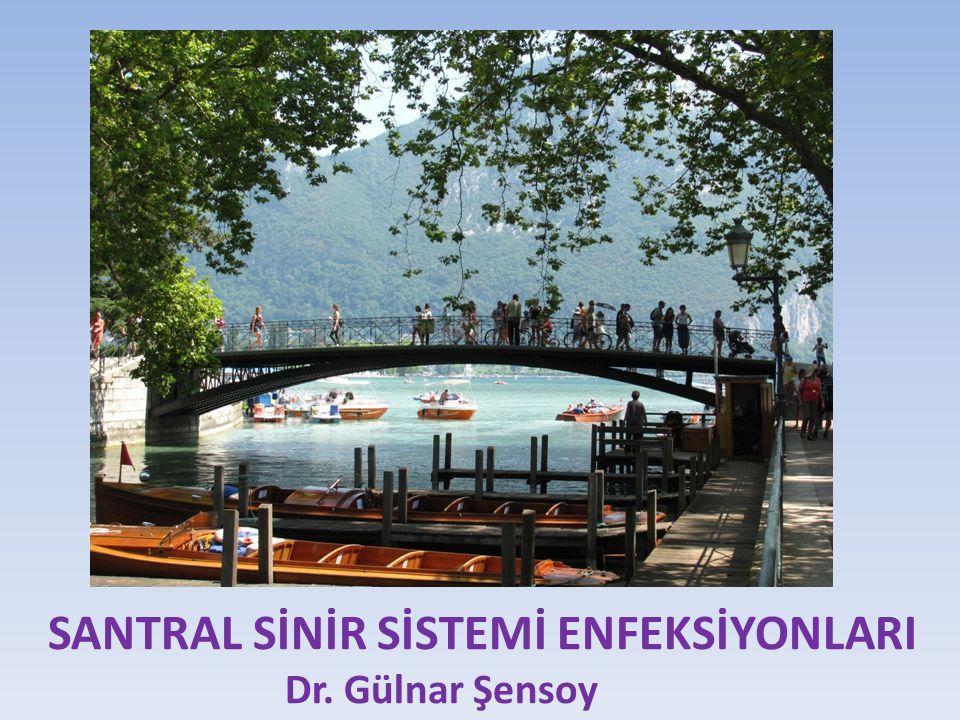 SANTRAL SİNİR SİSTEMİ ENFEKSİYONLARI Dr. Gülnar Şensoy