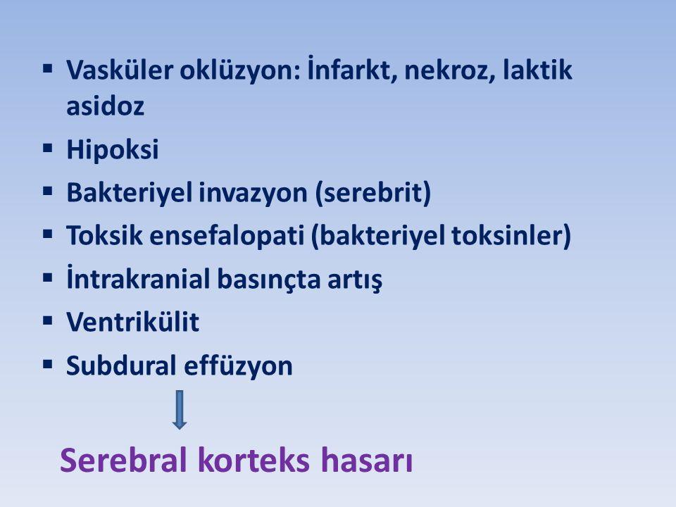  Vasküler oklüzyon: İnfarkt, nekroz, laktik asidoz  Hipoksi  Bakteriyel invazyon (serebrit)  Toksik ensefalopati (bakteriyel toksinler)  İntrakranial basınçta artış  Ventrikülit  Subdural effüzyon Serebral korteks hasarı