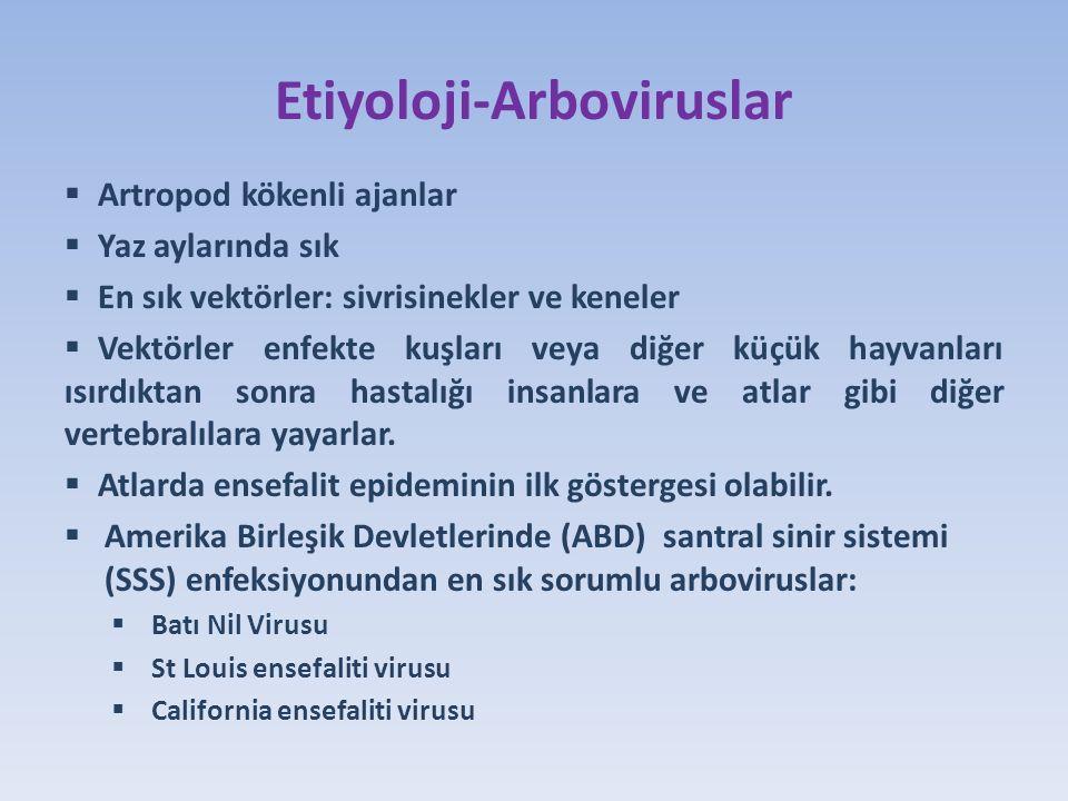 Etiyoloji-Arboviruslar  Artropod kökenli ajanlar  Yaz aylarında sık  En sık vektörler: sivrisinekler ve keneler  Vektörler enfekte kuşları veya diğer küçük hayvanları ısırdıktan sonra hastalığı insanlara ve atlar gibi diğer vertebralılara yayarlar.