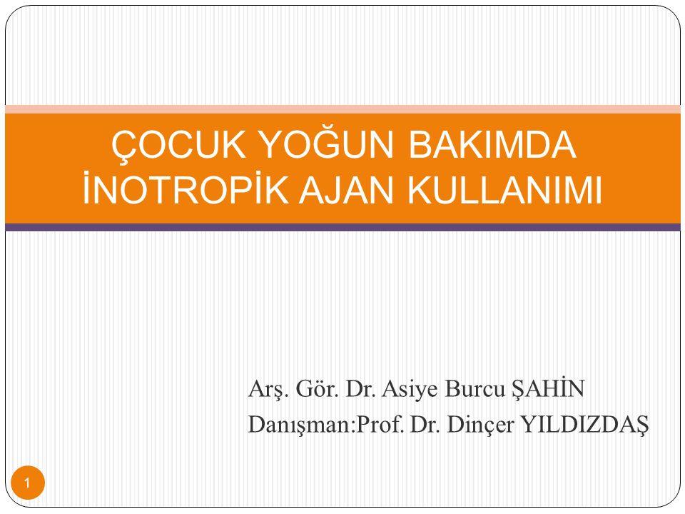 Arş.Gör. Dr. Asiye Burcu ŞAHİN Danışman:Prof. Dr.