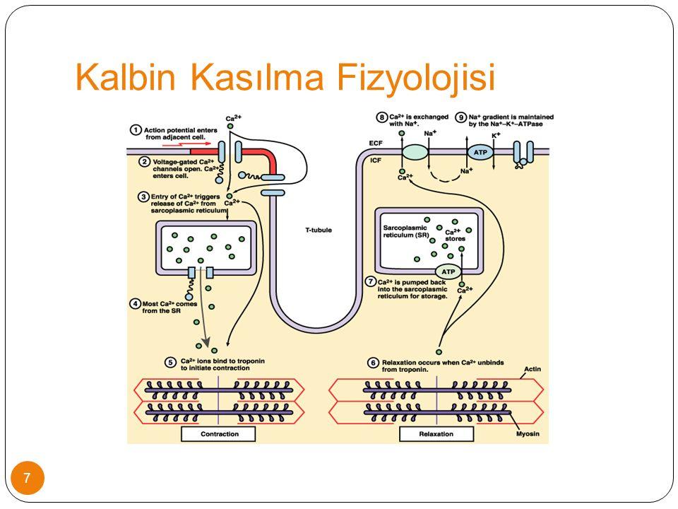 HİPOTANSİF ŞOKTA KULLANIM 5-10 mcg/kg/dk infuzyon hızıyla başlanmalı Yaşa uygun kan basıncının sağlanması ve perfüzyonun düzelip düzelmediği ( vücut ısısı, KDZ, idrar çıkışı) kontrol edilerek infuzyon hızı 2-5 mcg/kg/dk arttırılmalı Normal kan basıncı sağlansa bile infüzyon hızı 20 mcg/kg/dk'dan fazla arttırılmamalı.