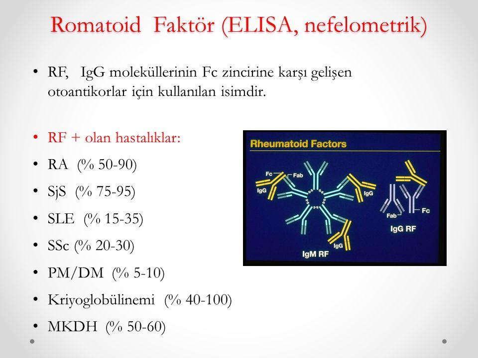 Romatoid Faktör (ELISA, nefelometrik) RF, IgG moleküllerinin Fc zincirine karşı gelişen otoantikorlar için kullanılan isimdir.