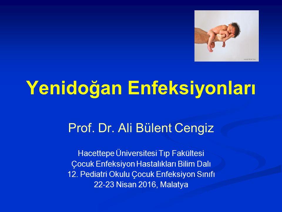 Yenidoğan Enfeksiyonları Prof. Dr. Ali Bülent Cengiz Hacettepe Üniversitesi Tıp Fakültesi Çocuk Enfeksiyon Hastalıkları Bilim Dalı 12. Pediatri Okulu